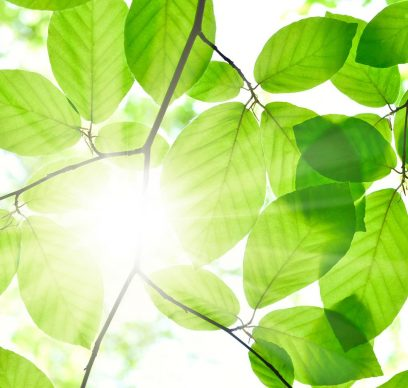 CIB-Environmental-Finance-recognises-BNP-Paribas-for-sustainable-bonds-and-loans